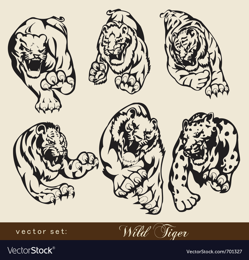 Tiger set vector | Price: 1 Credit (USD $1)