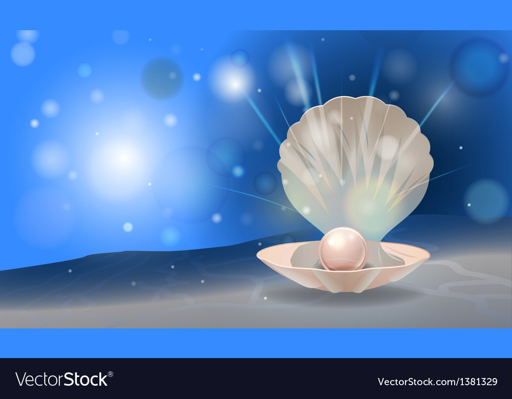 Pearl shell vector | Price: 3 Credit (USD $3)