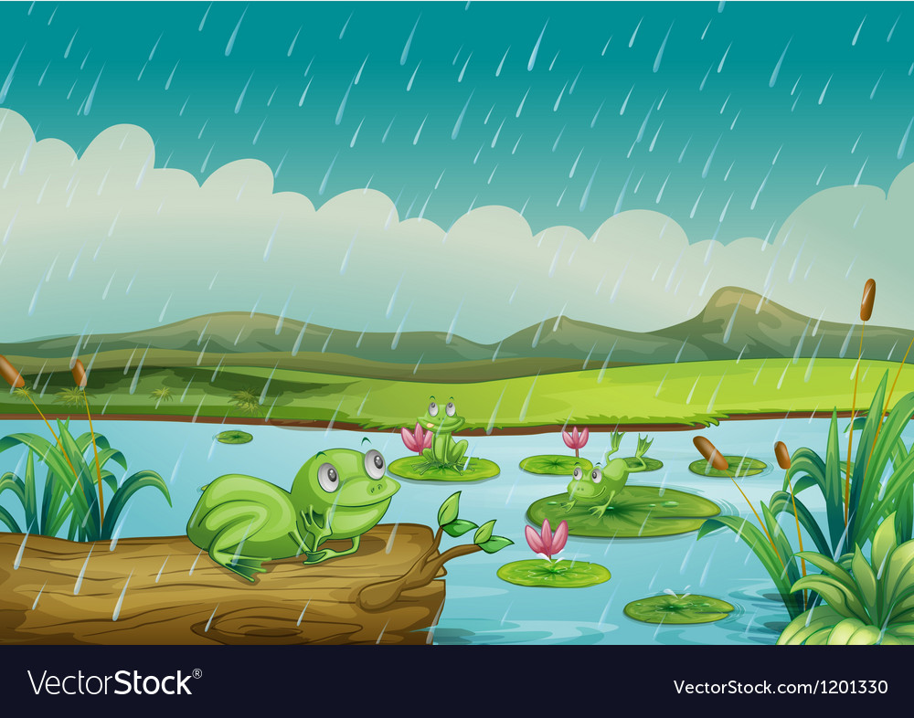 Three frogs enjoying the raindrops vector | Price: 1 Credit (USD $1)