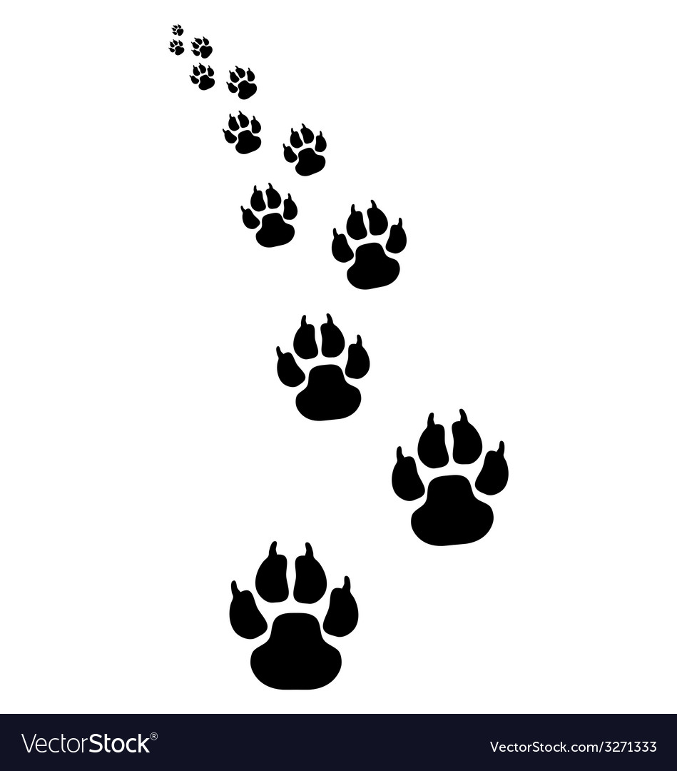 Footprints of dogs 4 vector | Price: 1 Credit (USD $1)