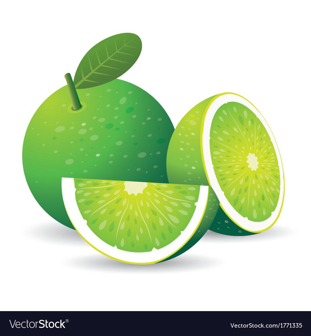 Green lemon vector | Price: 1 Credit (USD $1)