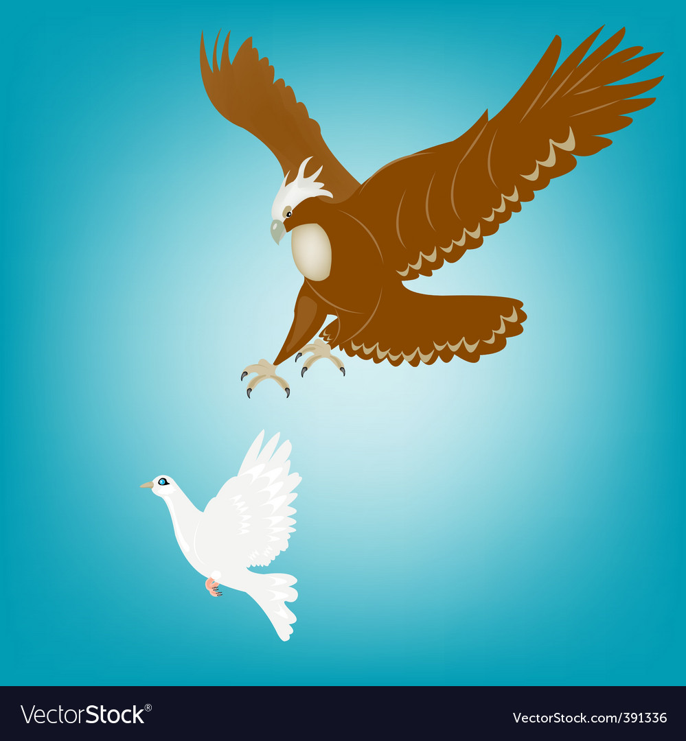 Eagle and dove vector | Price: 1 Credit (USD $1)