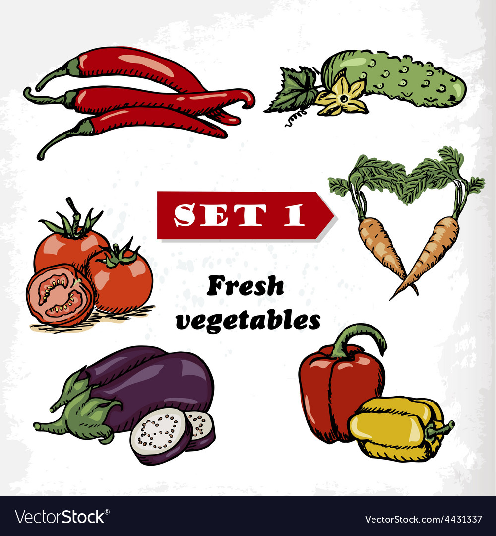 Set 1 fresh vegetables of tomato eggplant pepper vector | Price: 1 Credit (USD $1)