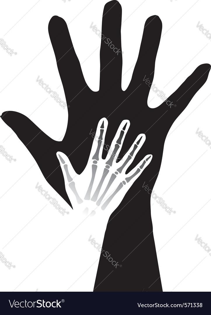 Anatomy hands vector   Price: 1 Credit (USD $1)