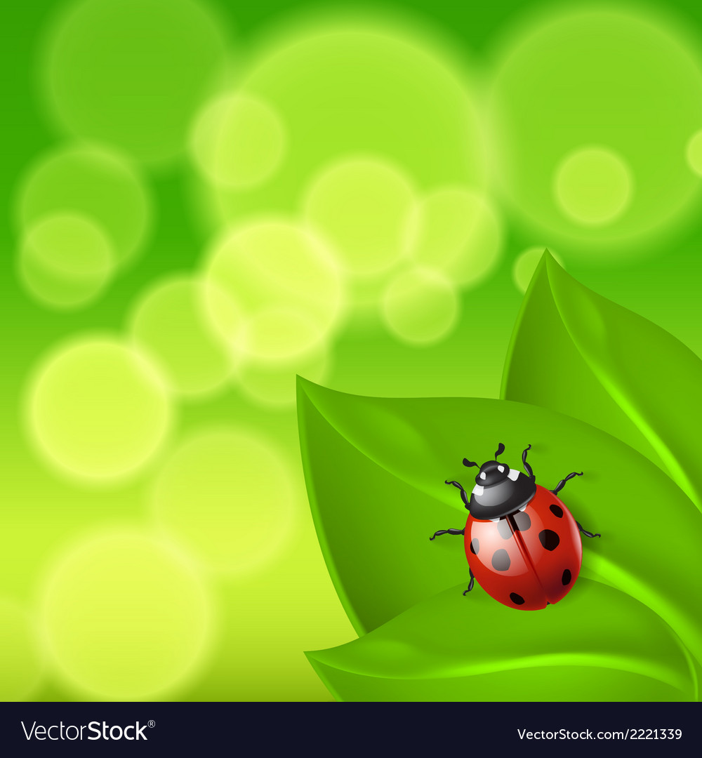 Green background with ladybird vector | Price: 1 Credit (USD $1)