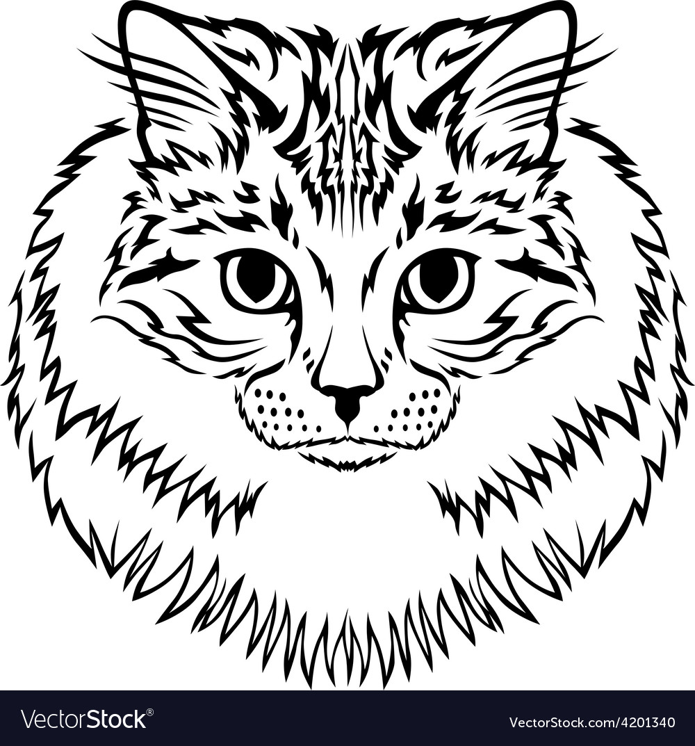 Siberian cat vector | Price: 1 Credit (USD $1)