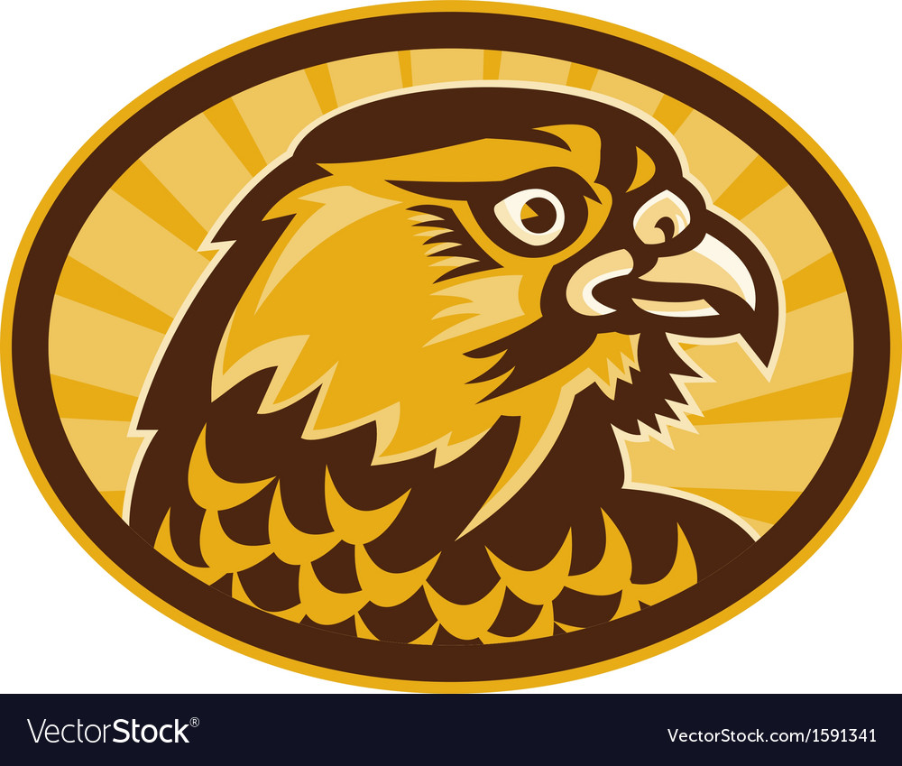 Peregrine falcon side view vector | Price: 1 Credit (USD $1)