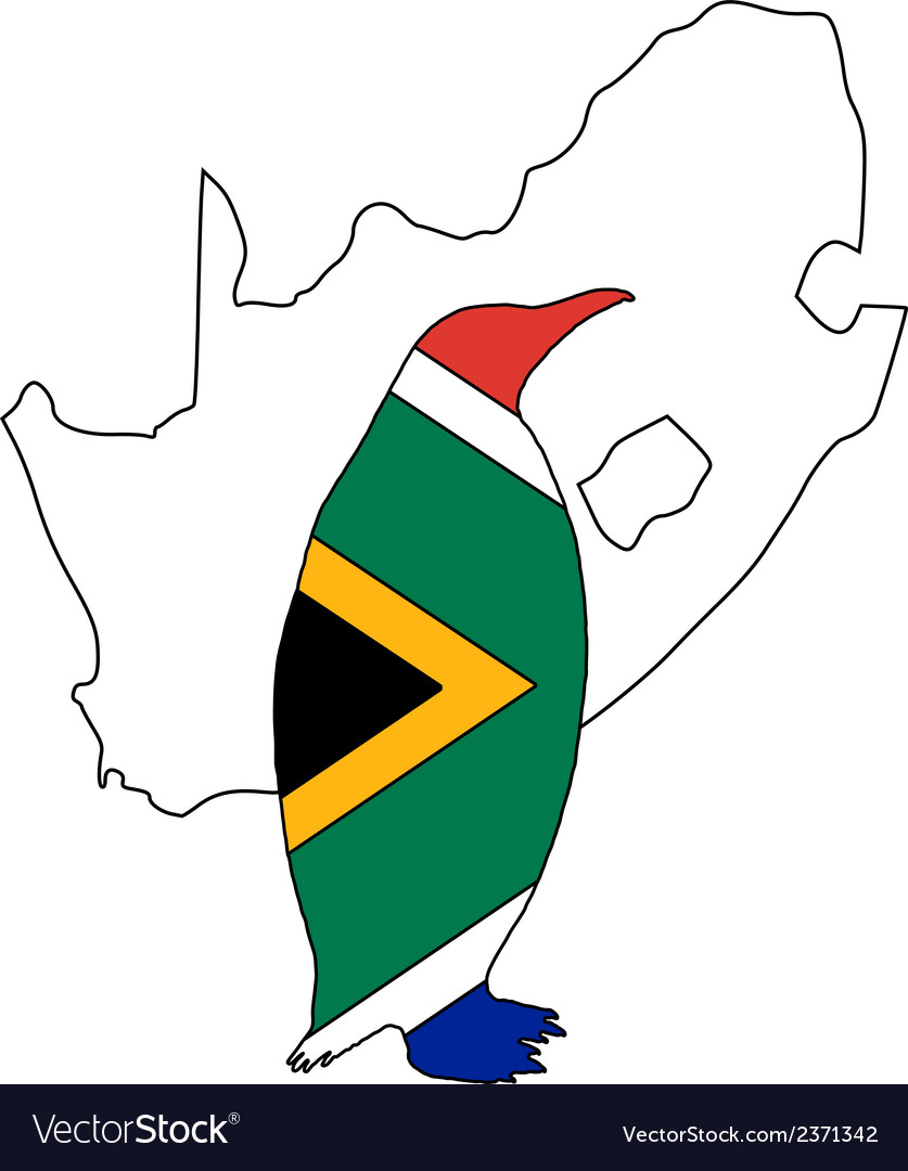 Penuin south africa vector | Price: 1 Credit (USD $1)