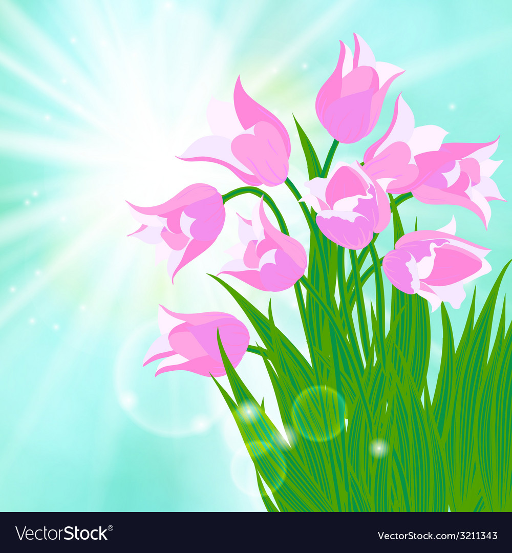 Spring card background with sun and tulips vector | Price: 1 Credit (USD $1)