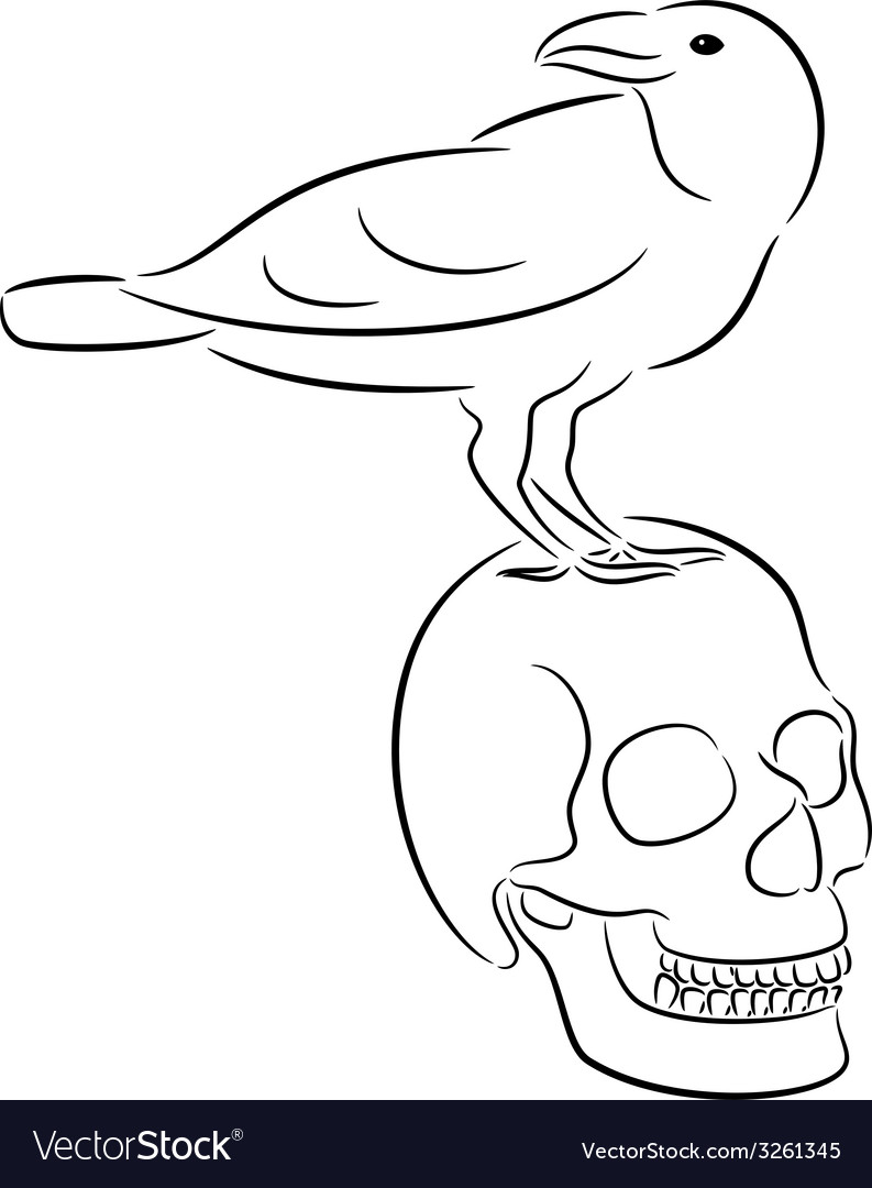 Skull and raven vector | Price: 1 Credit (USD $1)