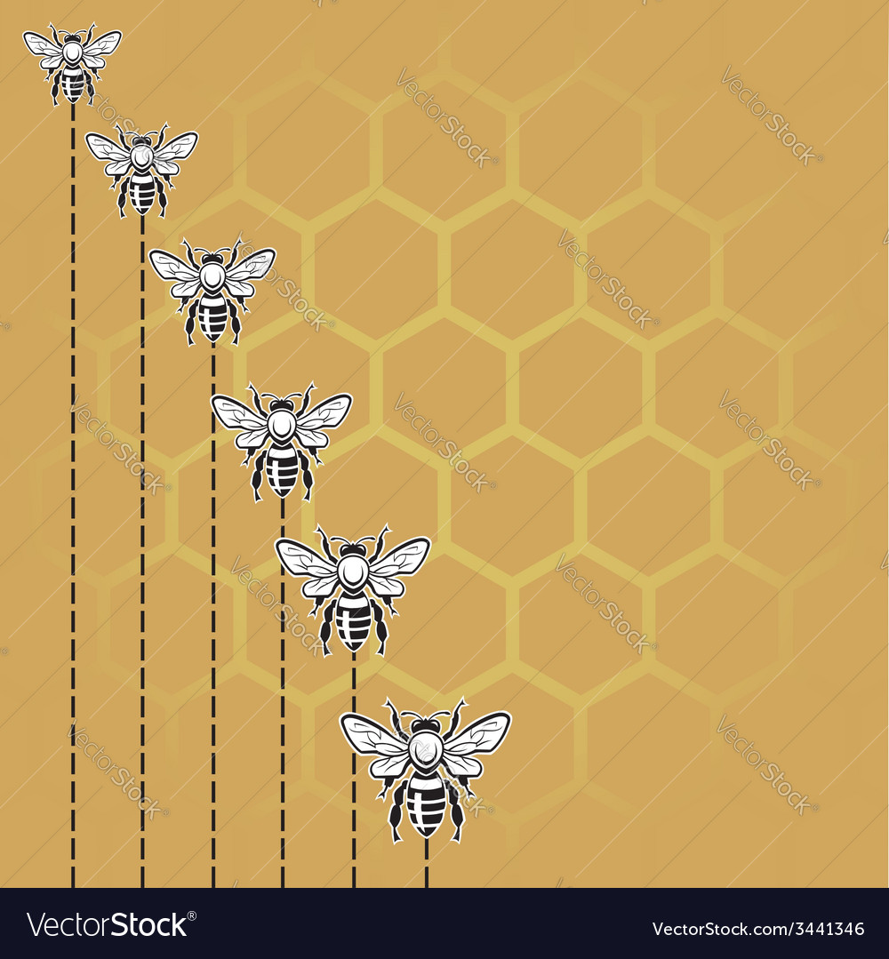 Bee and honey background vector | Price: 1 Credit (USD $1)