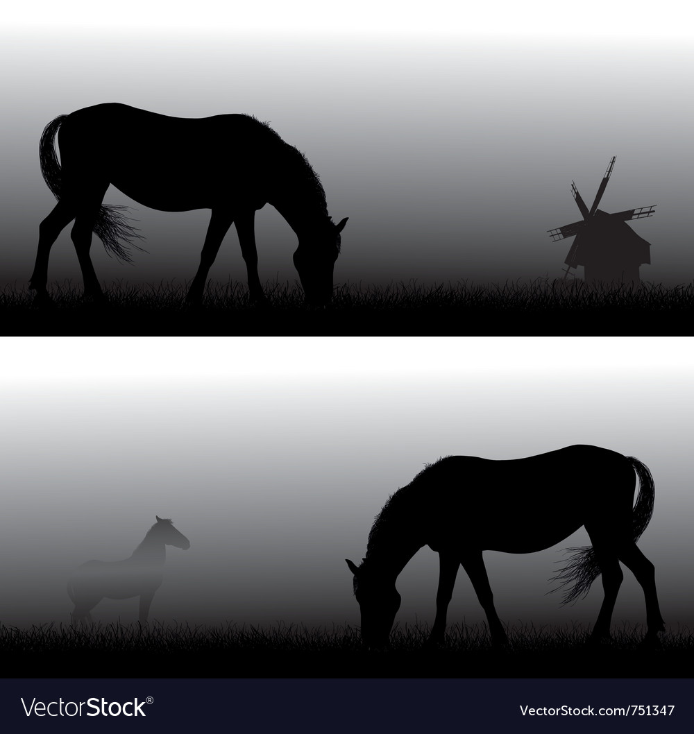 Feeding horses in fog vector | Price: 1 Credit (USD $1)