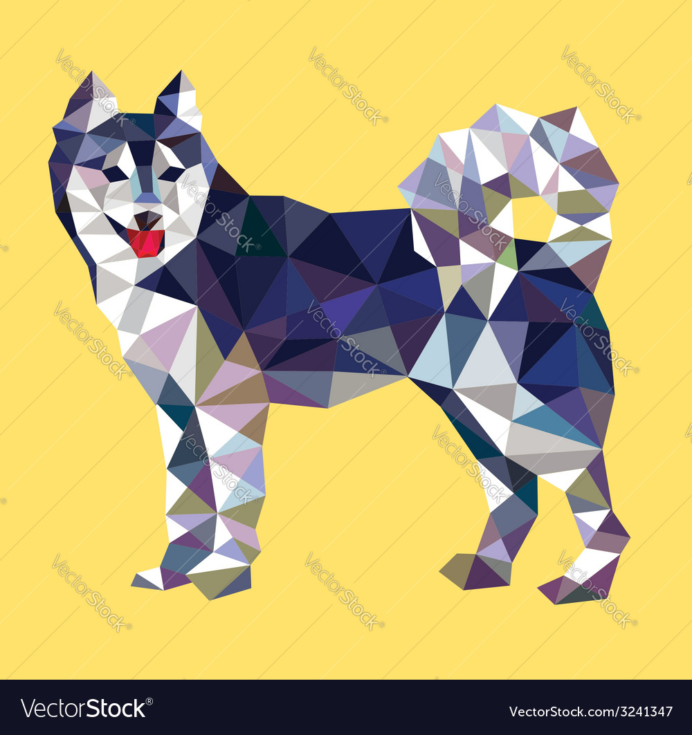 Siberian husky dog low polygon style vector | Price: 1 Credit (USD $1)