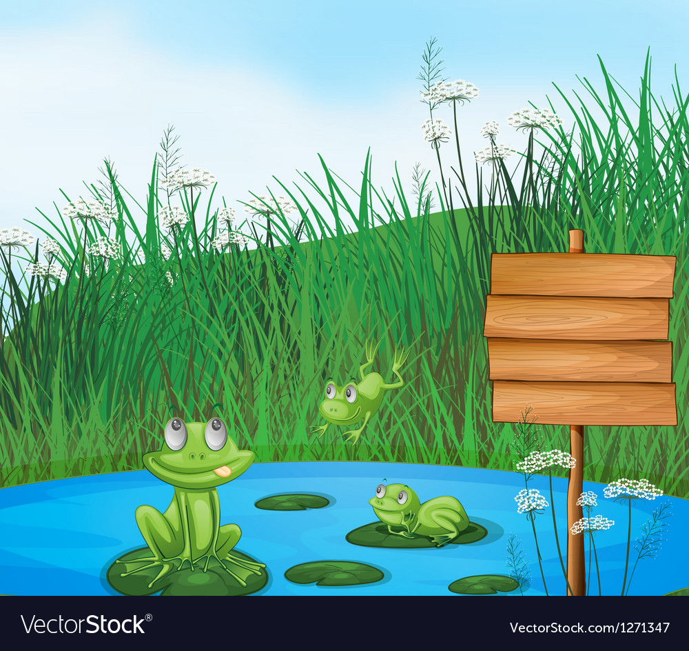 Three playful frogs at the pond beside an empty vector | Price: 1 Credit (USD $1)