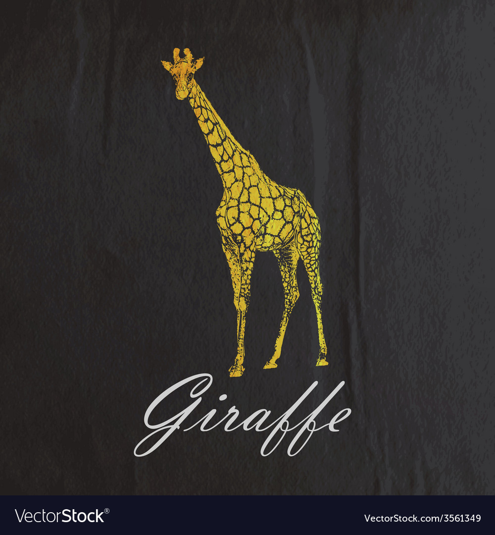 Vintage of an orange giraffe on the old blac vector | Price: 1 Credit (USD $1)