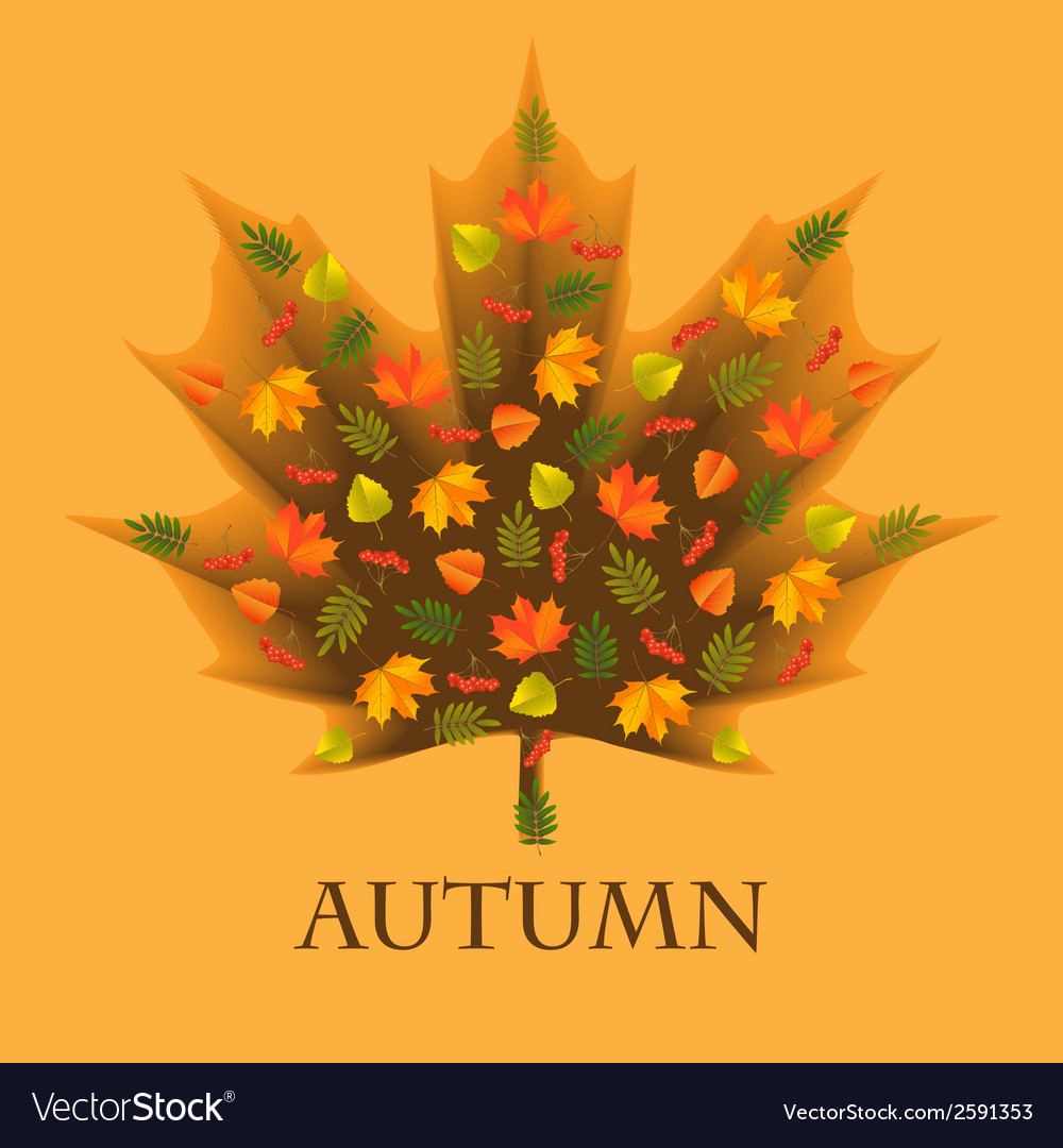 Autumn background with leaves laid out in the shap vector | Price: 1 Credit (USD $1)