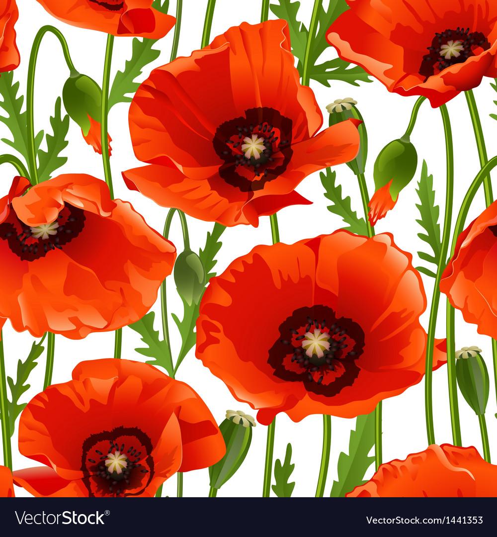 Poppy seamless pattern vector | Price: 1 Credit (USD $1)