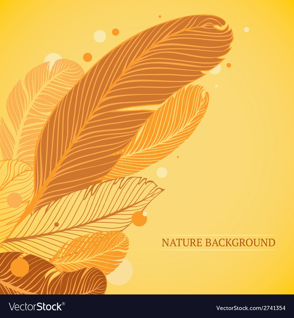Feathers background vector | Price: 1 Credit (USD $1)