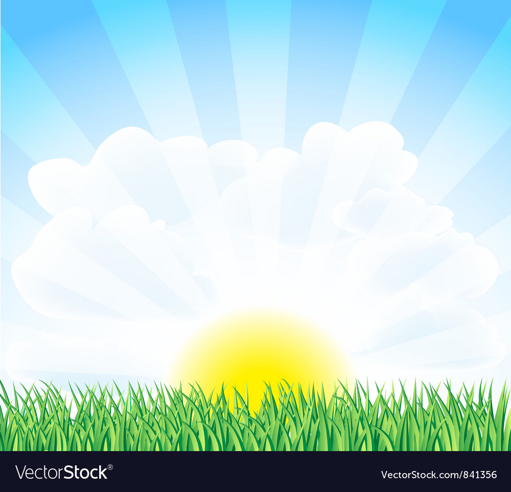 Field vector | Price: 1 Credit (USD $1)