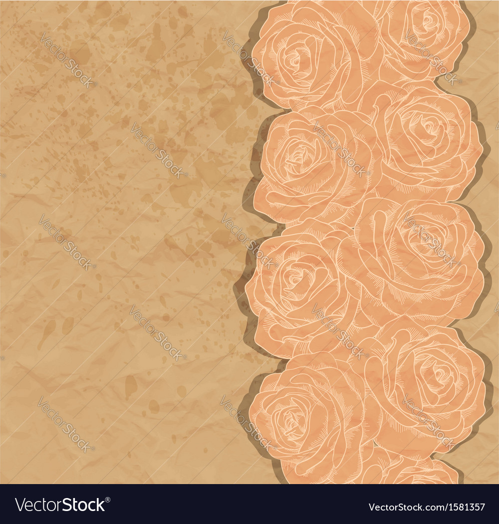 Vintage background rose in the corner of old paper vector | Price: 1 Credit (USD $1)