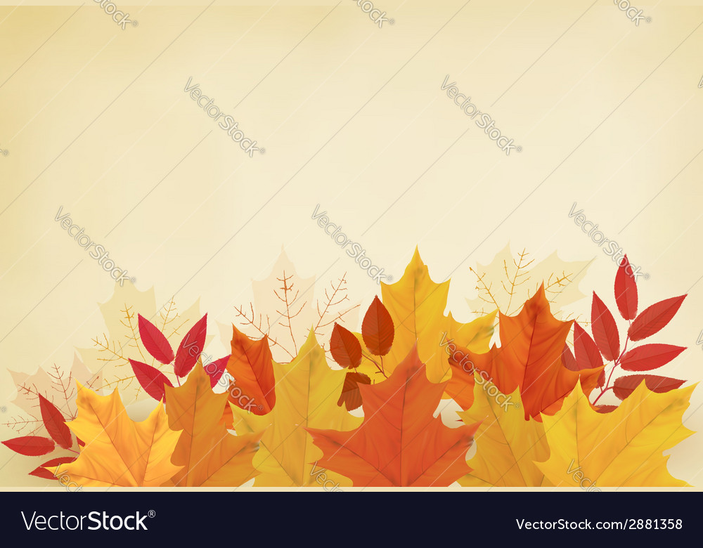 Abstract autumn background with colorful leaves vector   Price: 1 Credit (USD $1)