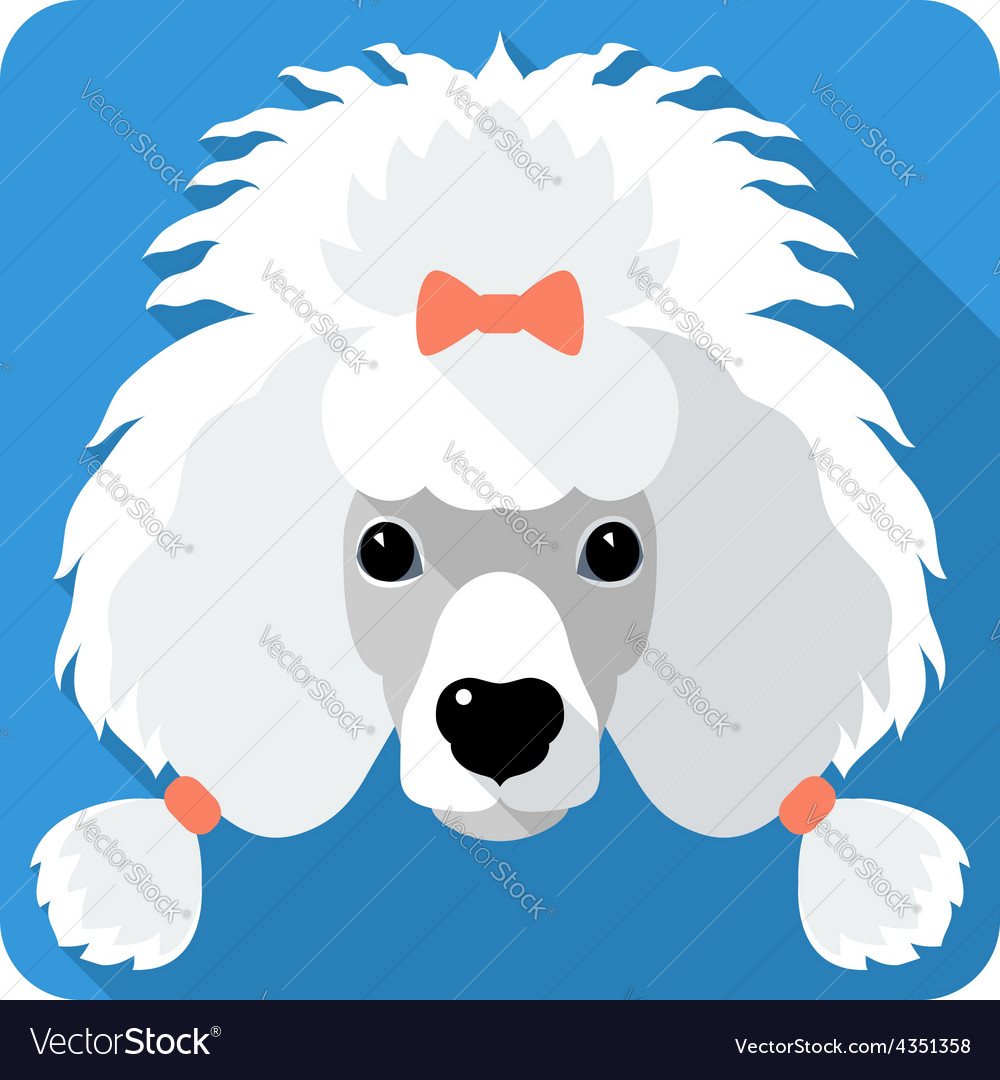 Dog poodle icon flat design vector | Price: 1 Credit (USD $1)