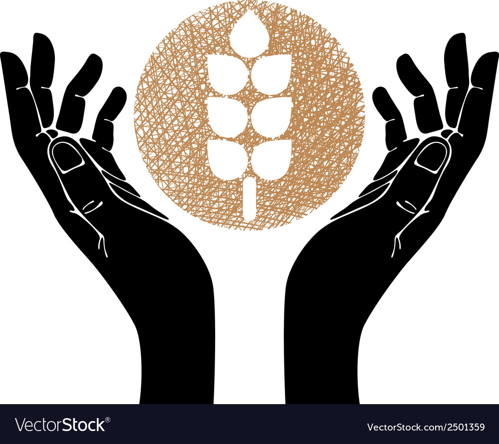 Hands with wheat symbol vector | Price: 1 Credit (USD $1)