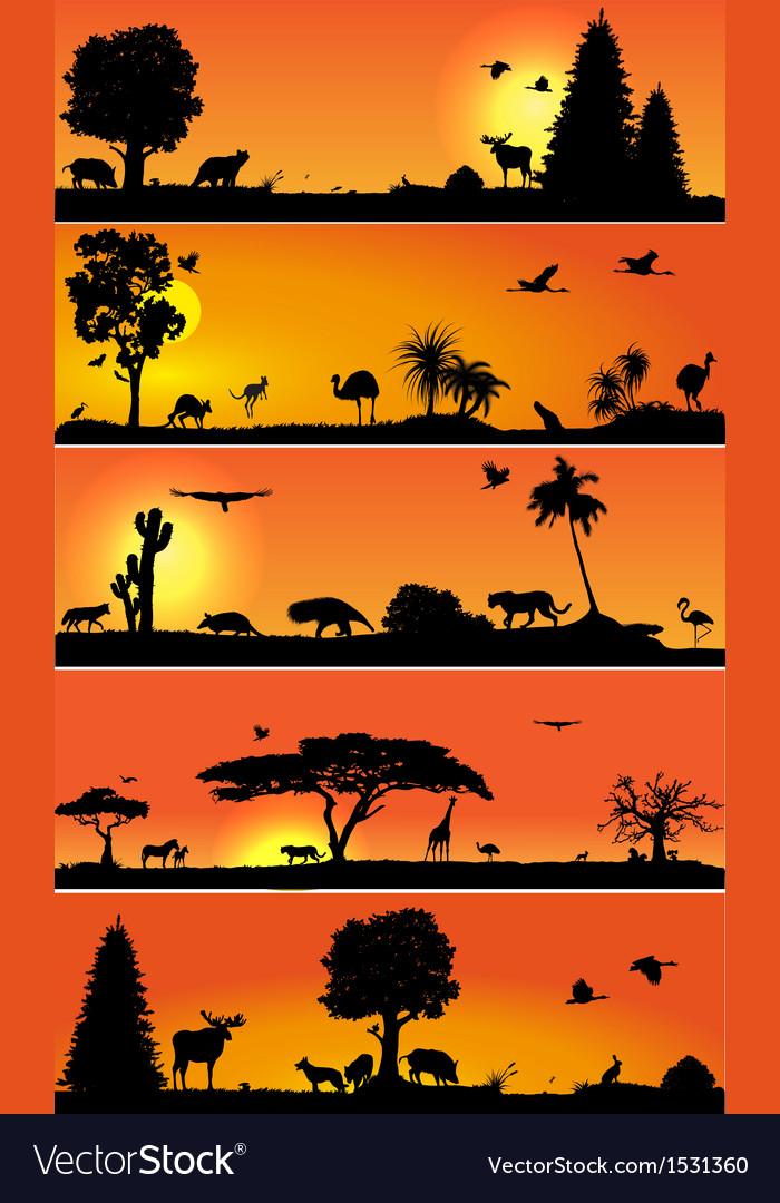 Banners with wold fauna and flora vector | Price: 1 Credit (USD $1)