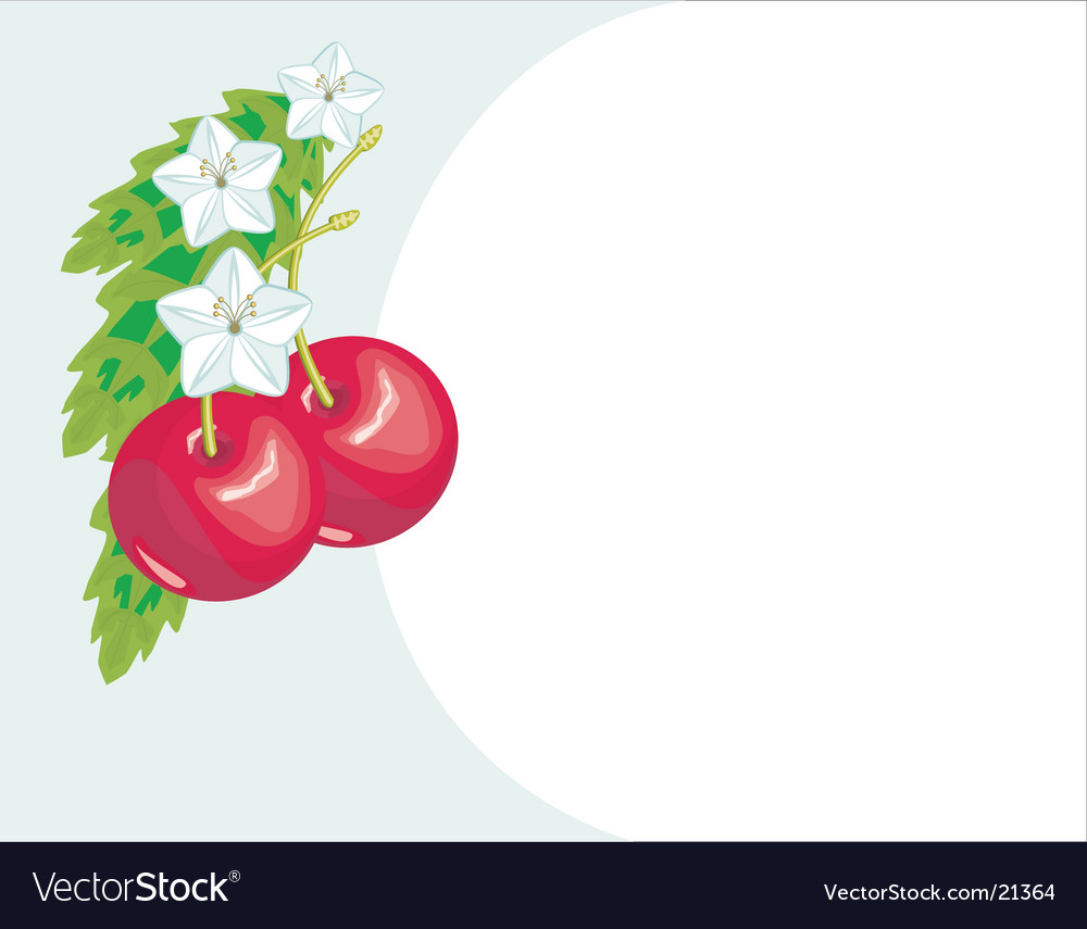 Floral background with fruit vector | Price: 1 Credit (USD $1)