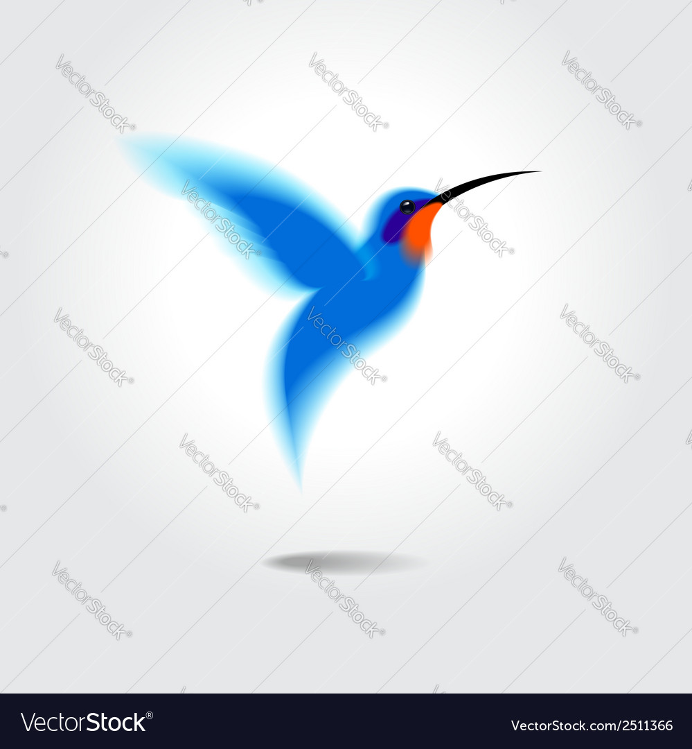 Hummingbird vector | Price: 1 Credit (USD $1)