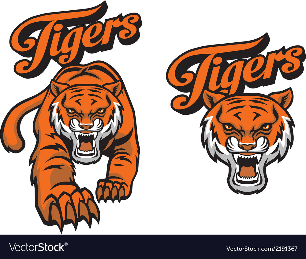 Tiger mascot vector | Price: 3 Credit (USD $3)