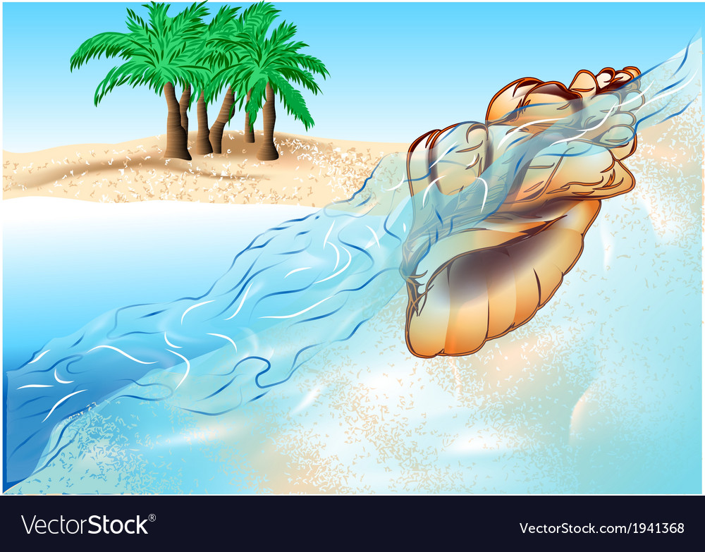 Shell and beach vector   Price: 1 Credit (USD $1)