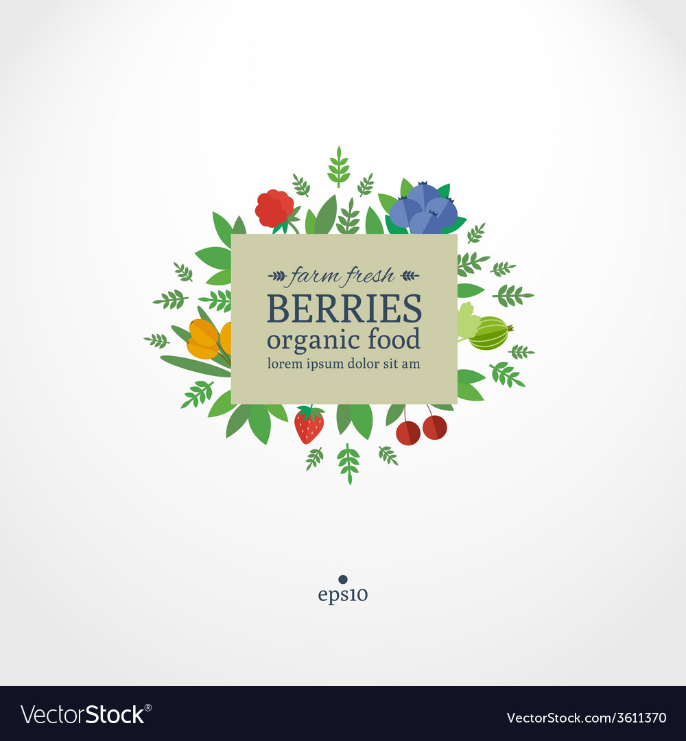 Banner with fresh berries concept organic food vector | Price: 1 Credit (USD $1)