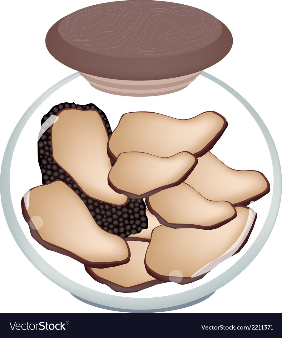 A jar of preserved black truffle mushrooms vector | Price: 1 Credit (USD $1)