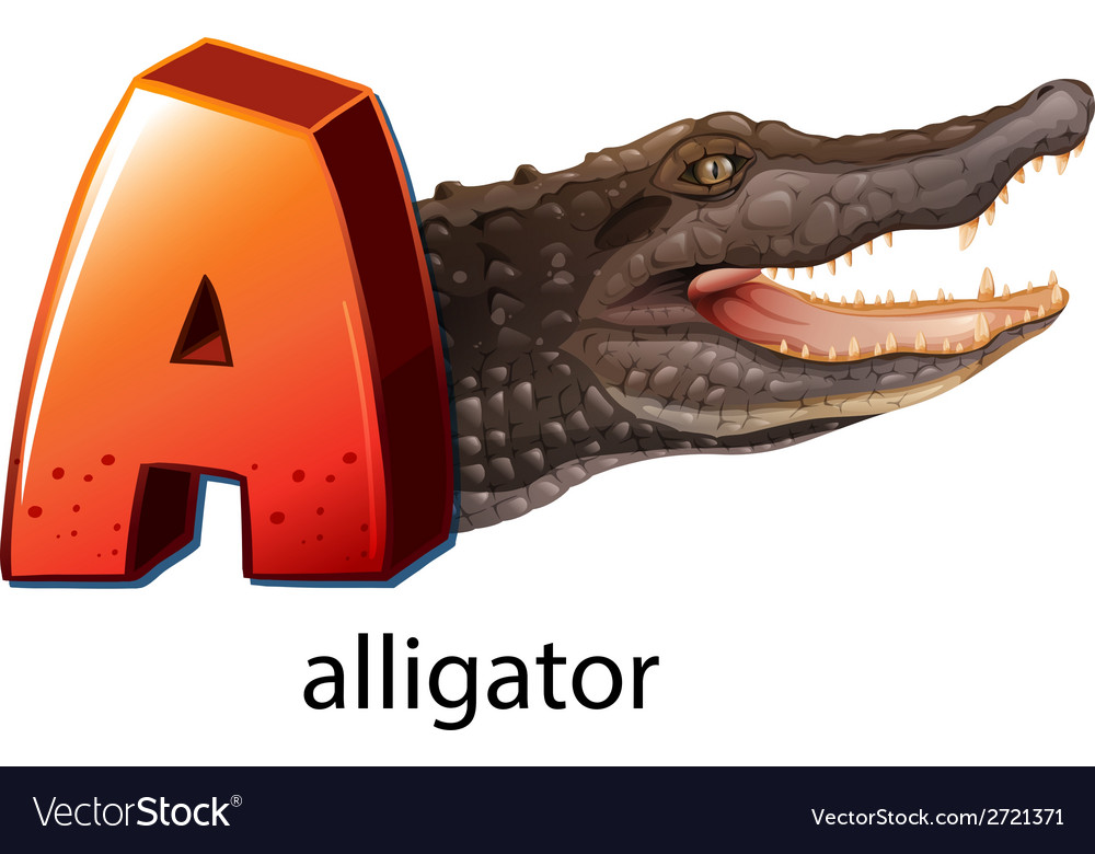 A letter a for alligator vector | Price: 1 Credit (USD $1)