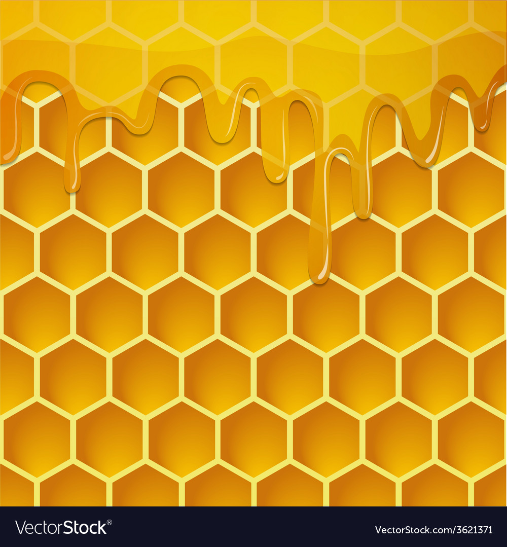 Honeycomb with honey background vector | Price: 1 Credit (USD $1)