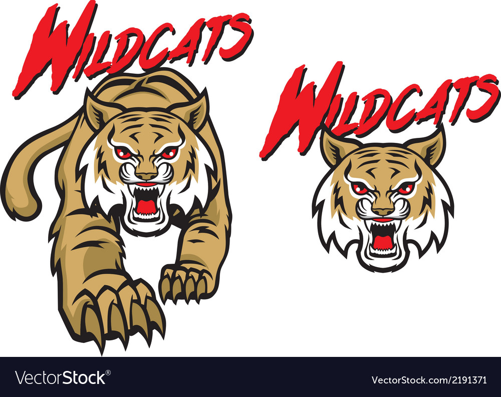 Wildcats mascot vector | Price: 3 Credit (USD $3)