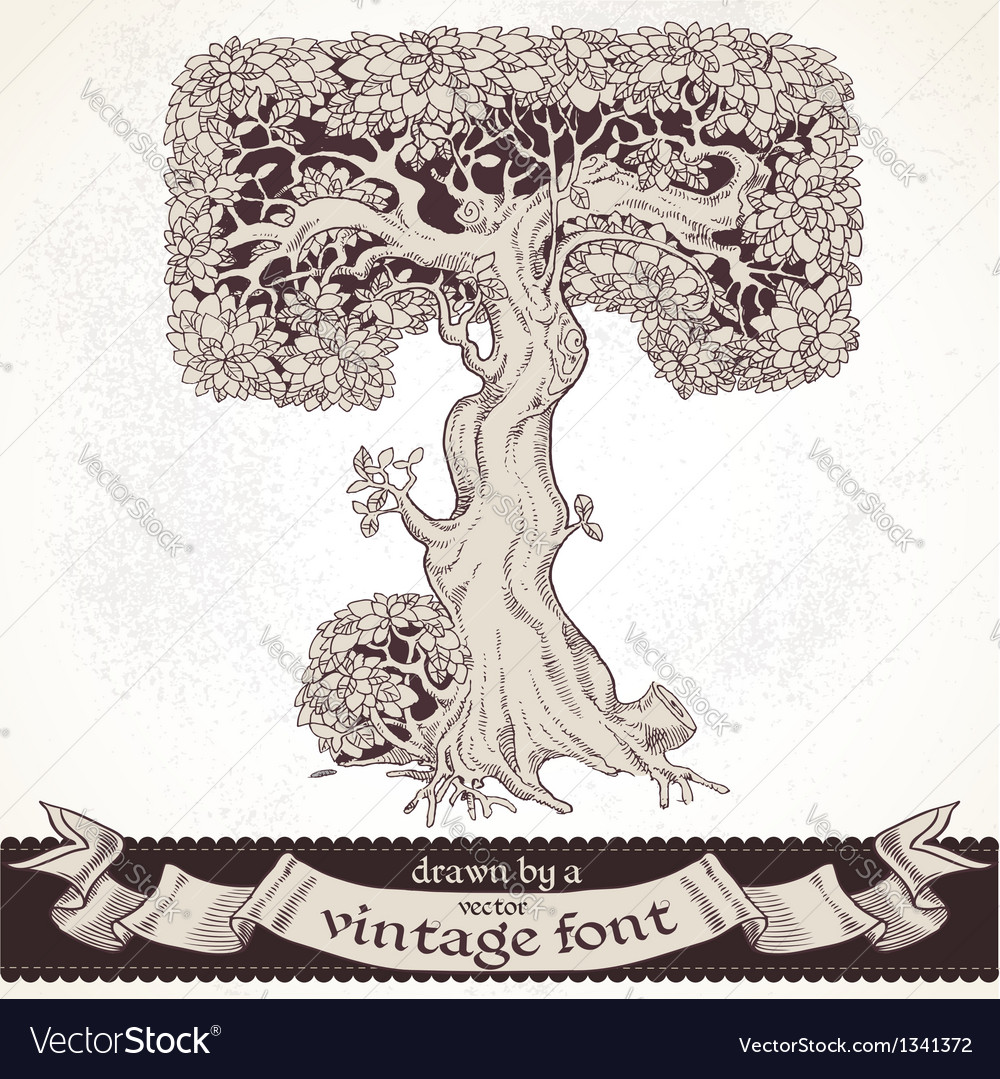 Fable forest hand drawn by a vintage font - t vector | Price: 1 Credit (USD $1)