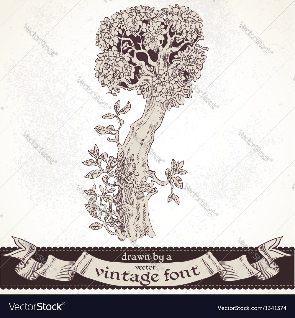 Fable forest hand drawn by a vintage font - i vector | Price: 1 Credit (USD $1)