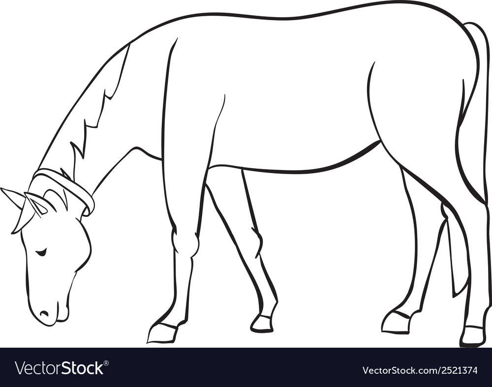 Outline horse vector | Price: 1 Credit (USD $1)