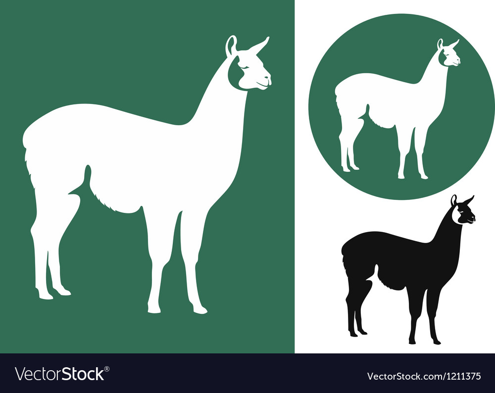 Llama logo vector | Price: 1 Credit (USD $1)