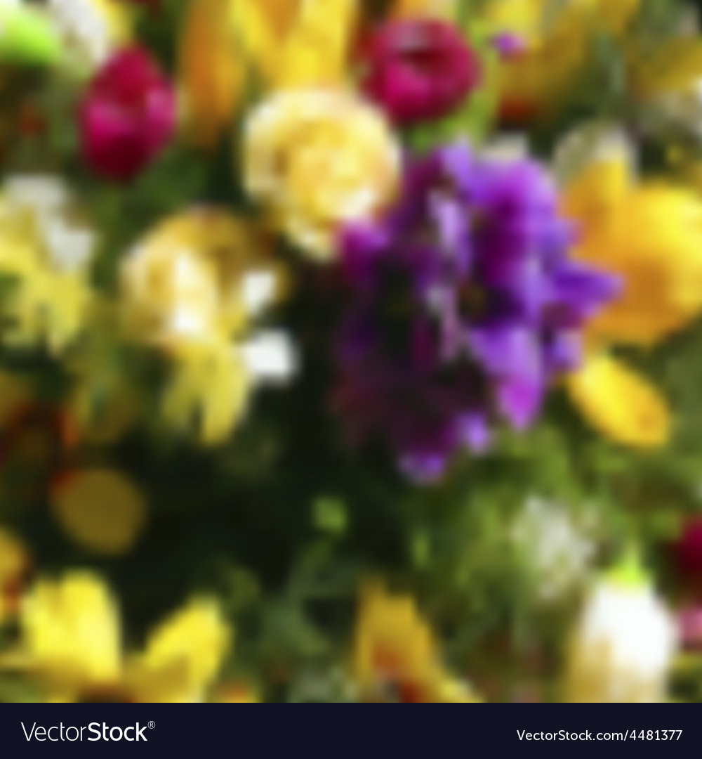 Blurred template backdrop with flowers with place vector   Price: 1 Credit (USD $1)