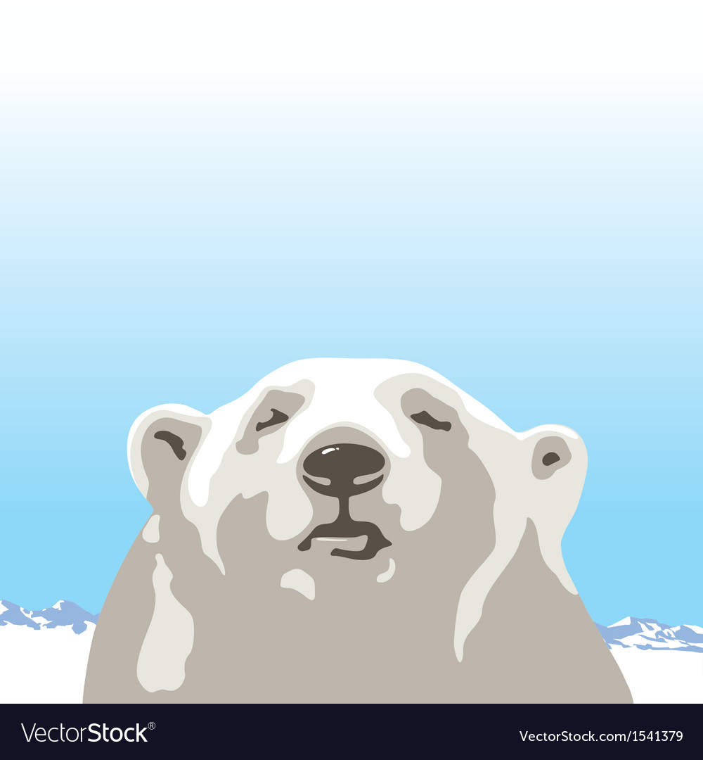 White bear vector | Price: 1 Credit (USD $1)