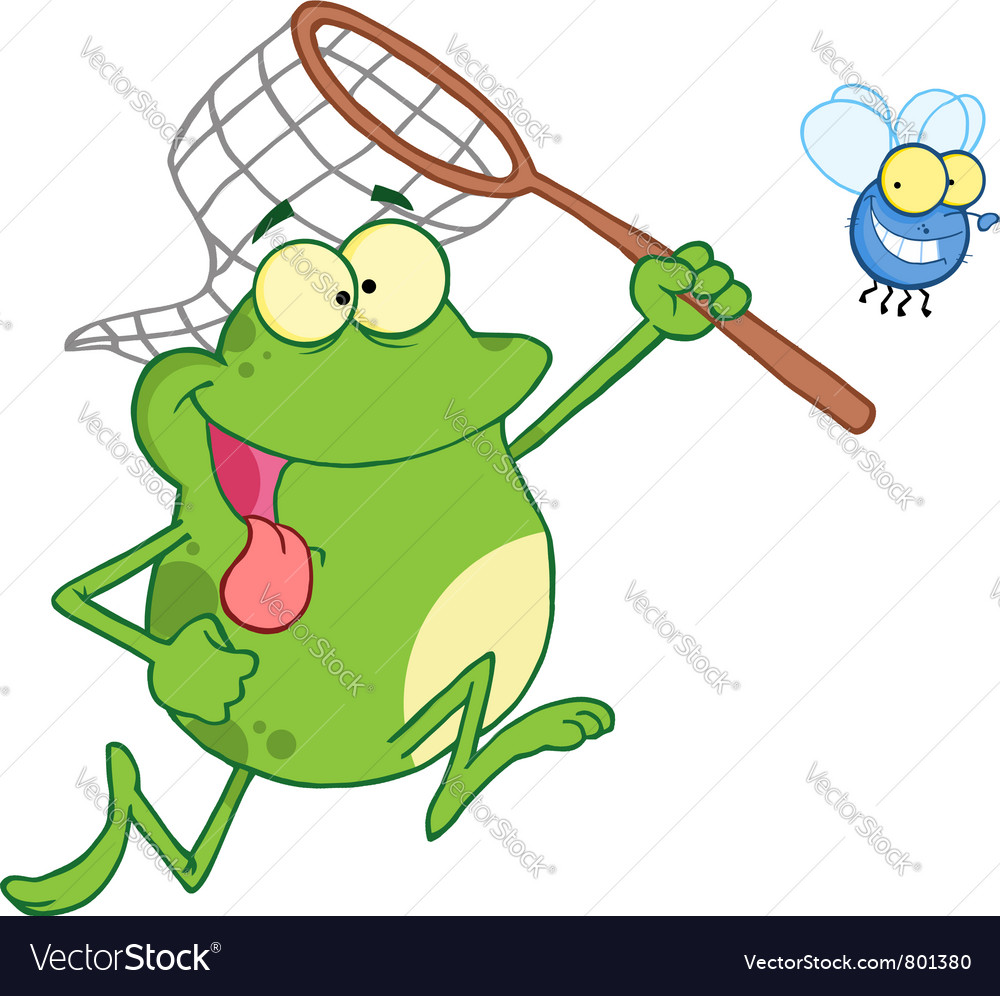 Frog chasing fly with a net vector | Price: 1 Credit (USD $1)