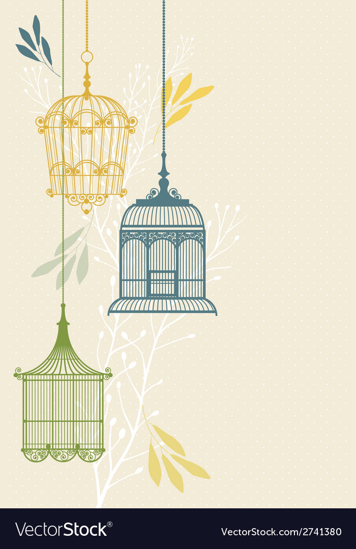 Invitation card with birdcage vector