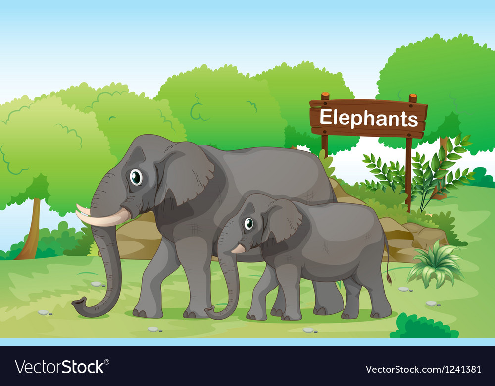 Elephants with a wooden signage at the back vector | Price: 1 Credit (USD $1)