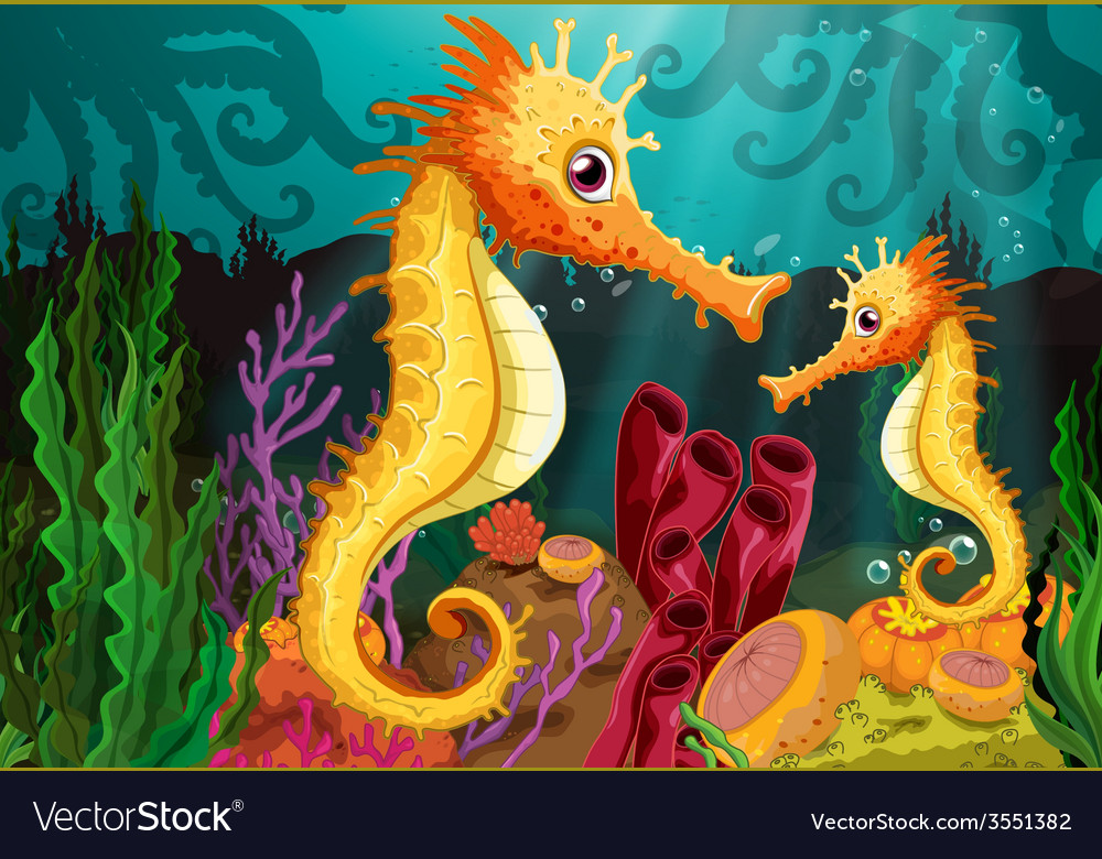 Two seahorses under the sea vector | Price: 3 Credit (USD $3)