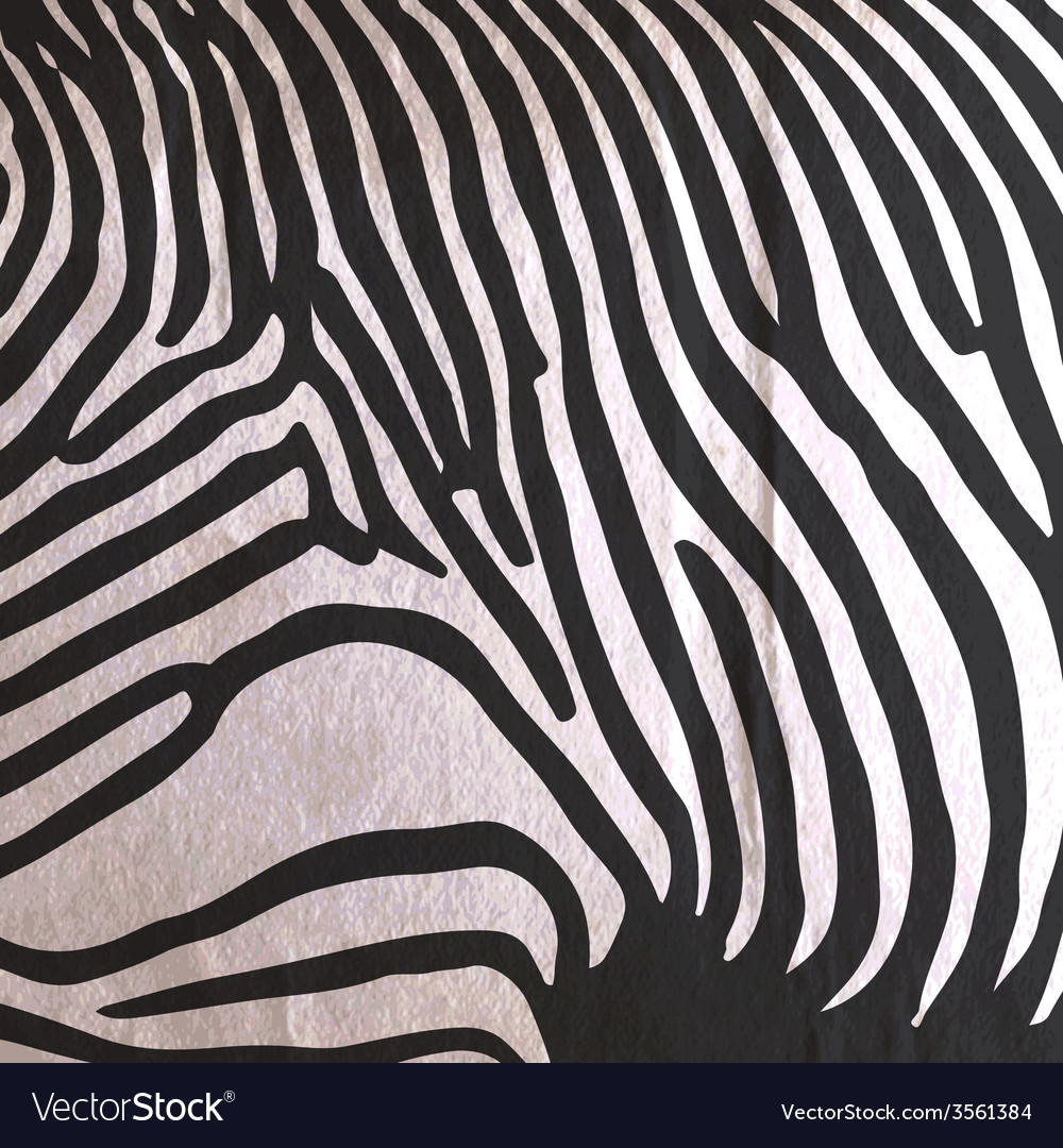 Abstract old paper background with animal zebra vector | Price: 1 Credit (USD $1)