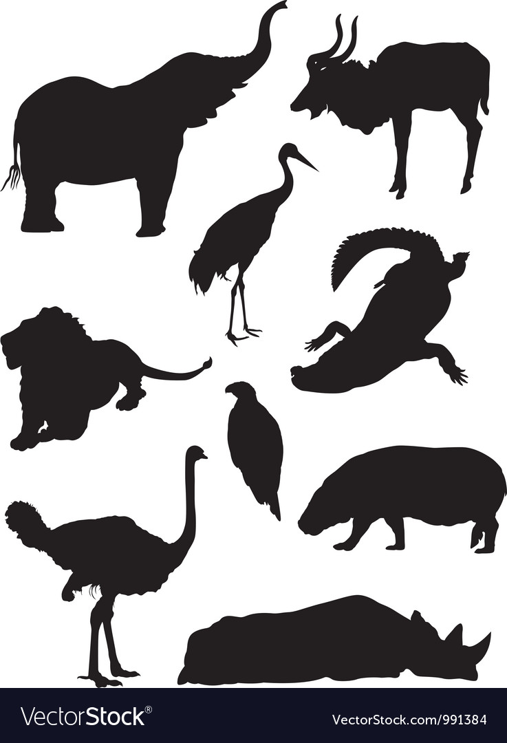 Zoo animals silhouette vector | Price: 1 Credit (USD $1)