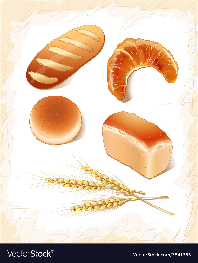 Set breads - realistic images vector | Price: 1 Credit (USD $1)